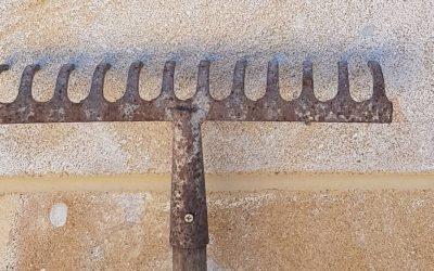 Scopri come pulire gli oggetti e i materiali in Pietra leccese e Carparo